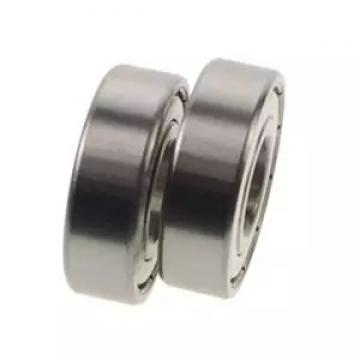 45 mm x 75 mm x 16 mm  FAG S6009-2RSR Single Row Ball Bearings