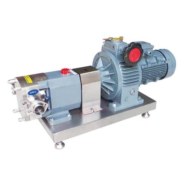 NACHI IPH-56B IPH Double Gear Pump #2 image